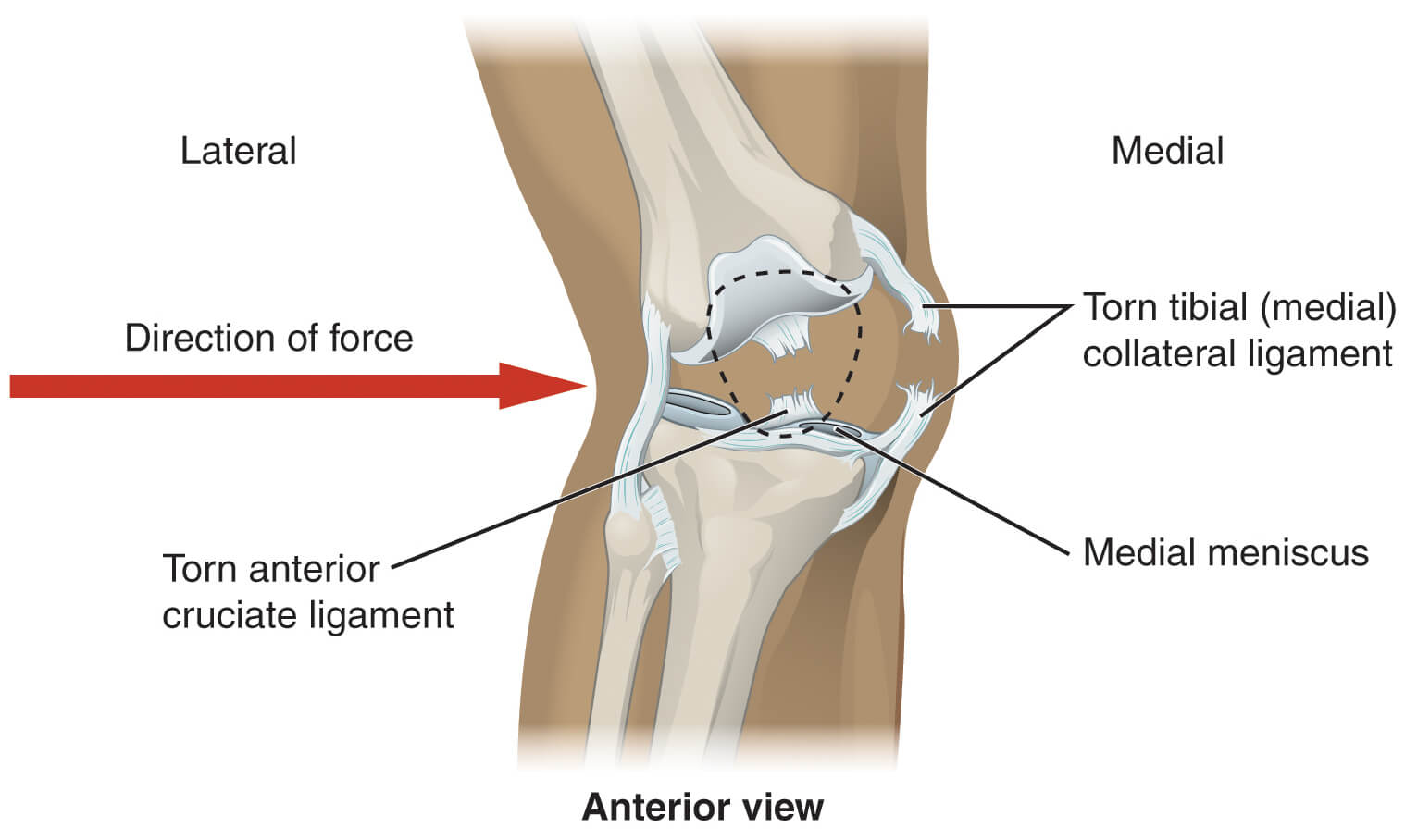Photo of Natural Remedies for Joint Pain