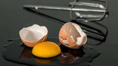 Photo of How crushed egg could help to repair bone damage?